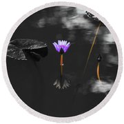 Purple Lily In Black And White Round Beach Towel