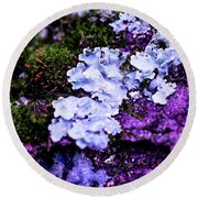 Purple Moss Round Beach Towel