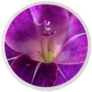 Purple Orchid Close Up Round Beach Towel