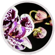Purple Orchid Reaching Out Round Beach Towel