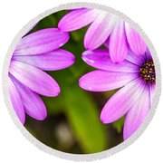 Purple Petals Round Beach Towel by Az Jackson