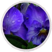 Purple Pansies Round Beach Towel