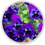 Round Beach Towel featuring the photograph Purple Pansies by Sandi OReilly