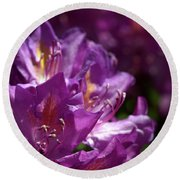 Round Beach Towel featuring the photograph Purple Rhododendron by Baggieoldboy