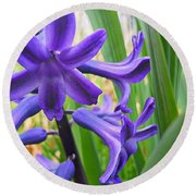 Round Beach Towel featuring the photograph Purple Spring by Robert Knight