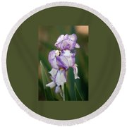Round Beach Towel featuring the photograph Purple Striped Bearded Iris 2 by Sheila Brown