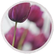 Purple Tulip 2 Round Beach Towel