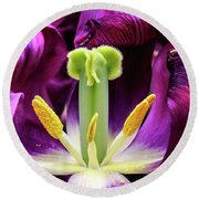 Round Beach Towel featuring the photograph Purple Tulip Macro by Darleen Stry