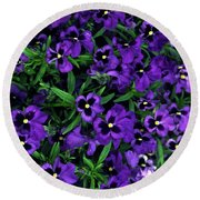 Round Beach Towel featuring the photograph Purple Viola Flowers by Sally Weigand