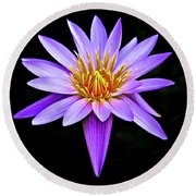 Purple Waterlily With Golden Heart Round Beach Towel