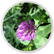 Purple Wild Flower Round Beach Towel