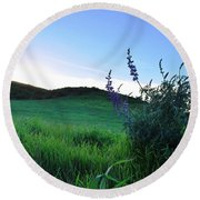 Round Beach Towel featuring the photograph Purple Wildflowers In Beautiful Green Pastures by Matt Harang