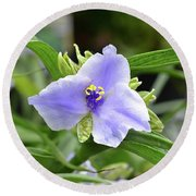 Spiderwort Round Beach Towel by Ronda Ryan