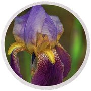 Purplish Iris Round Beach Towel by Rick Friedle