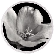 Round Beach Towel featuring the photograph Purslane In Monochrome by David and Carol Kelly