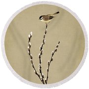 Pussy Willow And Chickadee Round Beach Towel