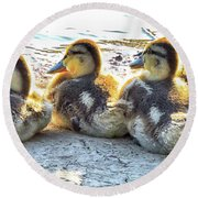 Quacklings Round Beach Towel