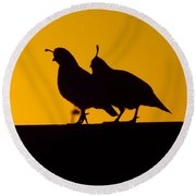Quail At Sunset Round Beach Towel