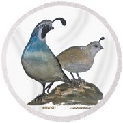 Quail Parents Wondering Round Beach Towel