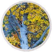 Quaking Aspen Round Beach Towel