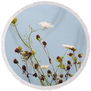 Queen Anne's Lace And Dried Clovers Round Beach Towel by Lise Winne