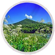 Queen Anne's Lace, Peaks Of Otter  Round Beach Towel