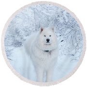 Quinn The Mighty Samoyed Round Beach Towel
