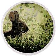 Rabbit In Meadow Round Beach Towel