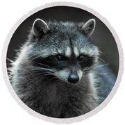 Raccoon 2 Round Beach Towel