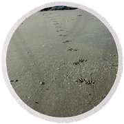 Raccoon Tracks Round Beach Towel