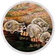 Raccoons At Sunrise Round Beach Towel