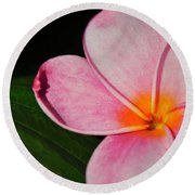 Radiant Bloom Round Beach Towel