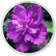 Round Beach Towel featuring the photograph Rain Drop Covered Blossom by Jeff Severson