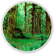 Rain Forest, Olympic National Park Round Beach Towel by Panoramic Images