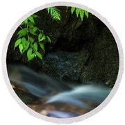 Rain Forest Stream Round Beach Towel