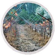 Rain In The Vineyard Round Beach Towel by Dubi Roman