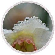 Rain In Daffodils Round Beach Towel