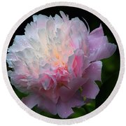 Round Beach Towel featuring the photograph Rain-kissed Peony by Byron Varvarigos