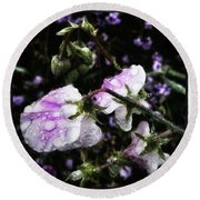 Round Beach Towel featuring the photograph Rain Kissed Petals. This Flower Art by Mr Photojimsf