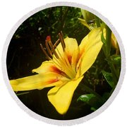 Rain Kissed Tiger Lily Round Beach Towel