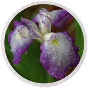 Rain-soaked Iris Round Beach Towel