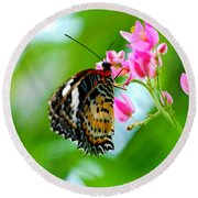 Round Beach Towel featuring the photograph Rainbow Butterfly by Peggy Franz