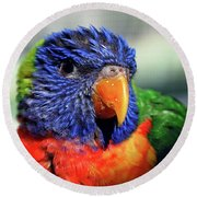 Rainbow Lorikeet Round Beach Towel