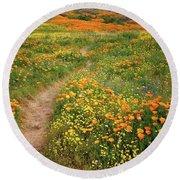 Rainbow Of Wildflowers Bloom Near Diamond Lake In California Round Beach Towel