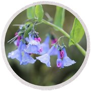 Raindrops On Blue Bells Round Beach Towel