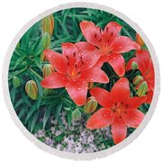 Round Beach Towel featuring the photograph Raindrops On Crimson Pixie Asiatic Lily by Nancy Lee Moran