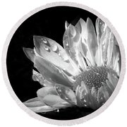 Raindrops On Daisy Black And White Round Beach Towel by Jennie Marie Schell