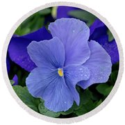 Raindrops On Purple Pansy Round Beach Towel