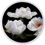 Raindrops On White Tree Peonies Round Beach Towel by Gill Billington