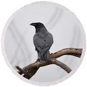 Rainy Day Raven Round Beach Towel